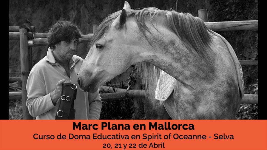 Curso-Marc-Plana-Doma-Educativa-Mallorca Abril 18