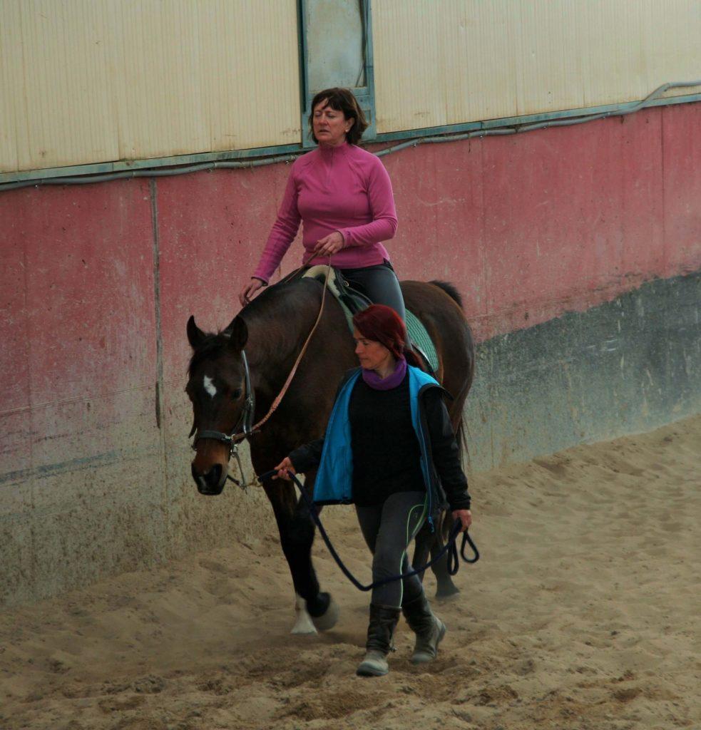 curso doma educativa Segovia