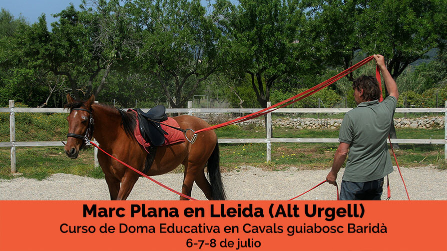 Curso Marc Plana doma educativa Lerida
