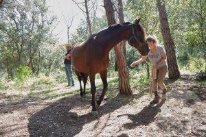 curso doma educativa Horseway juny 01