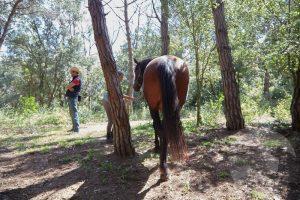 curso doma educativa Horseway juny 04