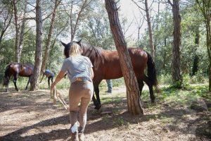 curso doma educativa Horseway juny 06
