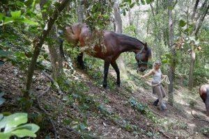 curso doma educativa Horseway juny 20