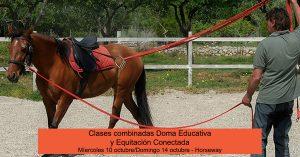 Promo Marc Plana domaeducativa equitacion conectada octubre