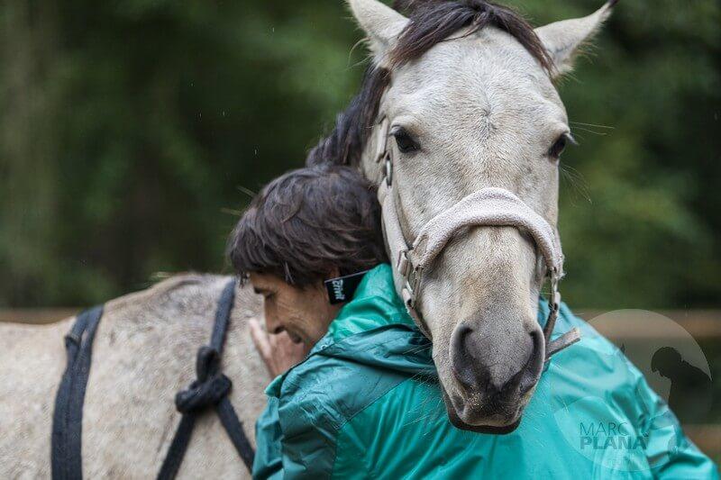 curso doma educativa con el caballo el tiempo 01