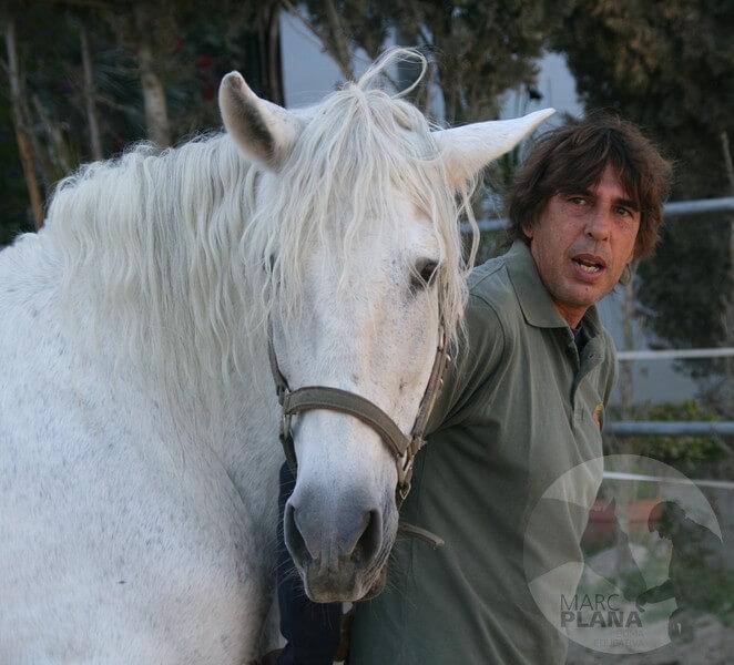 curso doma educativa con el caballo el tiempo 03