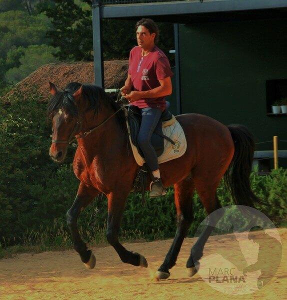 curso doma educativa la reunión en el caballo 04