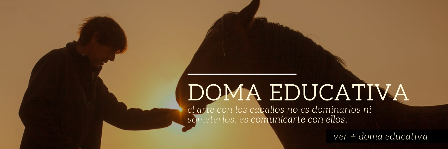 2020_BANNER HOME_doma educativa_MC